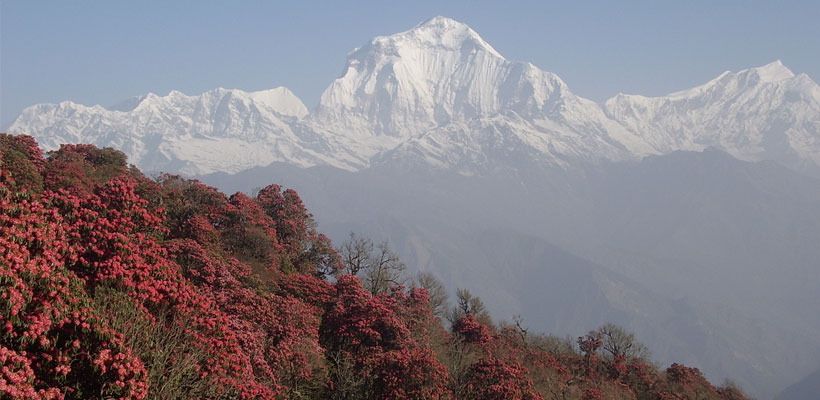 When is the Best Time to Visit Nepal | Best Season To ...